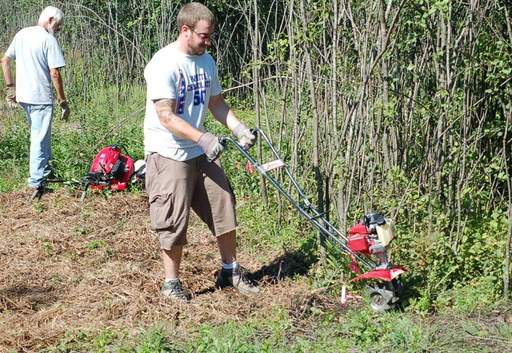 Volunteers are in the third year of a project to replace invasive buckthorn with an oak and hickory savanna and other native plants at the Whippoorwill Farm, Riverwoods Road and Route 60 in Mettawa.