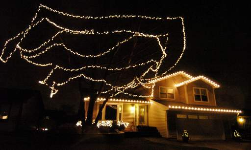 Holiday lights were installed for the owner of this Elk Grove Village home.
