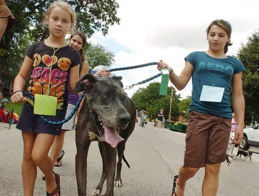 From left, Maddie Enman, Lizzy Hoyer and Ally Hoyer walk their great Dane, Goliath, during the Pet and Bike Parade at Grayslake Summer Days.