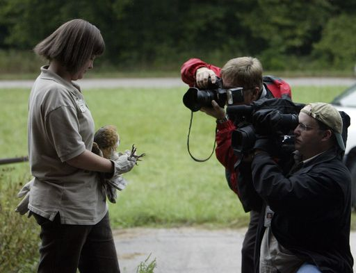 Photographers and videographers swarm around Rose Augustine of the Willowbrook Wildlife Center, who is holding a barn owl that Fermilab in Batavia is taking in, in an effort to increase the population of the Illinois-endangered species.